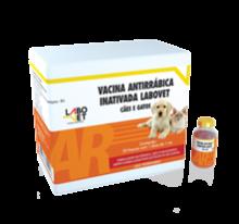 vacina-antirrabica